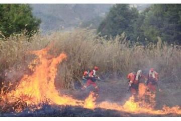 狗万APP玉溪森林火灾烧到昆明境内 军队出动灭火